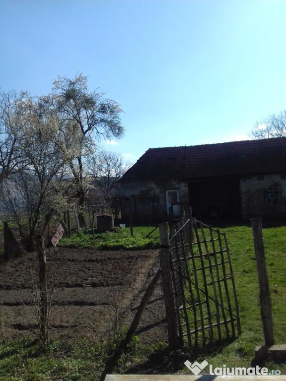 Casa la tara + teren intravilan