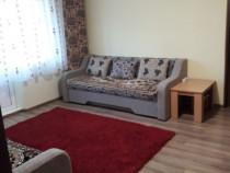 Apartament 2 camere Nufarul renovat/mobilat/utilat
