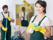 Persoane curatenie pentru muncă în Elvetia