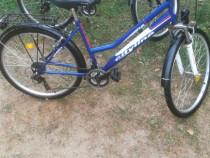2 biciclete DHS pereche