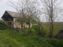 Teren 43.3 ari in Bercu comuna Lazuri