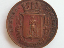 Medalie 1893 marturie botez Carol Principe Comuna Bucuresci