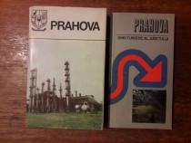 Prahova + Ghid turistic al judetului cu harti / C6P