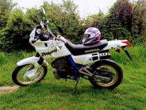 Dominator Nx 650