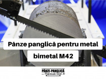 Panza fierastrau banzic panglica, MASTER 2825x27x10/14