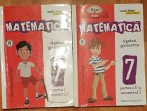 Matematica clasa VII Partea I + II de Anton si Maria Negrila