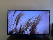 Televizor Smart Philips, 108 cm, 43PUS6162/12, 4K Ultra HD