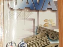 Programarea in Java de Calin Marin Vaduva