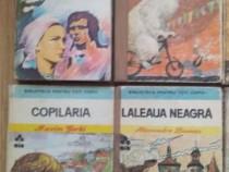 Pachet 7 volume din colectia Biblioteca pentru toti copiii