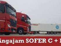 Angajez sofer profesionist categoria C+E, transport intern