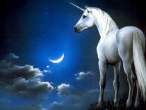 Cursuri Unicorn