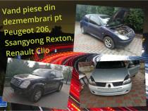 Dezmembrez Renault Clio, Peugeot 206, Ssangyong Rexton