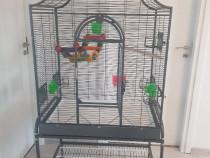 Volieră - Colivie pentru papagali sau pasari