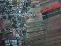 Teren arabil extravilan, 1,2 ha in Lipia