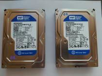 Hard disk SATA Western Digital 250GB HDD pentru calculator