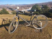 Bicicleta CROSSWAVE S3000