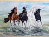 """Si caii iubesc libertatea, iubesc VIATA""pictura ulei panza"