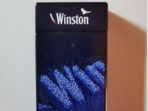 1 Bricheta metalica Winston de colectie