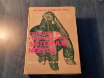 Fiziologia si fiziopatologia sistemului nervos I. T. Exarcu
