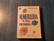 Numerologia in viata fiecaruia Anatol Basarab