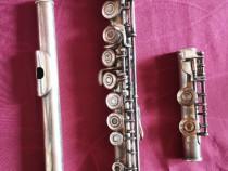 Flaut Lark