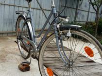 Bicicletă originală