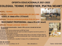 Inscrie+te la Şcoala Profesională TÂMPLAR