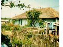 Casa cu gradina la tara