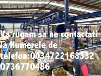 Locuri de munca la capsuni Spania,Contact cu firma Spaniola