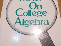 Focus on College Algebra