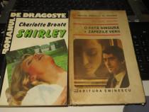 Lot 2 Romane de Dragoste de Charlotte Bronte si Regine Andry