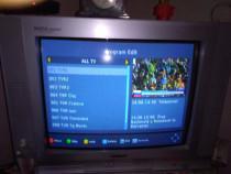 Antena reciver televizor tv la liber