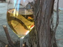 Vin rosu, alb direct de la butuc facut in gospodărie