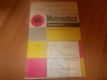 Matematica Geometrie- manual cl VII