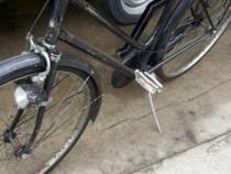 Bicicleta adulti