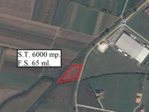 Teren la iesirea din Ineu spre Arad - ID : RH-7587-property