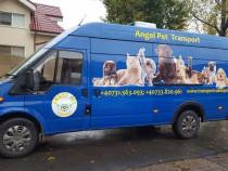 Transport CAINI si Pisici Autorizat Romania ANGLIA si invers