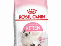 Royal Canin Kitten,10 kg