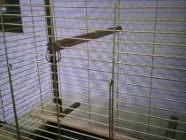 Colivie păsări Ferplast Italia