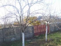 Casa de locuit comuna Scrioastea sat Brebina