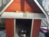 Cușca câine de talie medie
