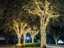 Instalatii luminoase copaci 17 m,exterior,ghirlande luminoas