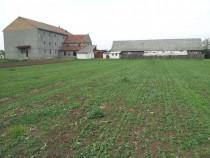 Teren 3250 mp cu moara in Secusigiu - ID : RH-10435-property