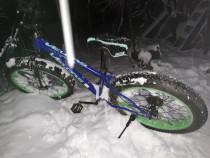Bicicleta Snow bike