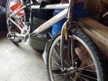 Bicicleta originală dakar