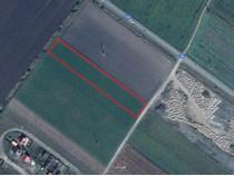 PF-Teren intabulat 7160mp,la intrare in Halchiu din DN13