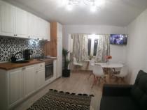 Apartament 3 camere Daria in Centrul Statiunii Targu-Ocna