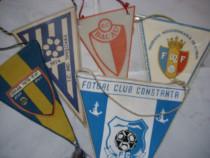 Fanioane Cluburi sportive romanesti