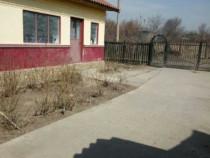 Casa la țară sat Ștefănești Călărași