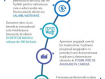 Operator logistic (stivuitorist) - Grup Industrial Delta Inv